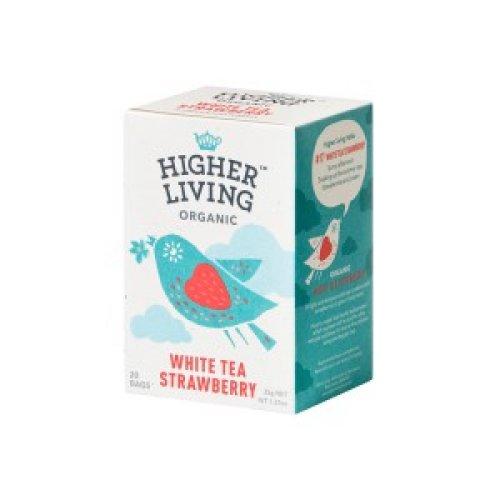 Biely čaj Jahoda 35g (20 vrecúšok)
