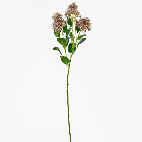 Zeleň orgován fialový 69cm