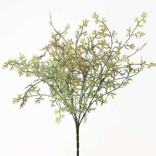 Zeleň papraď červená 36cm