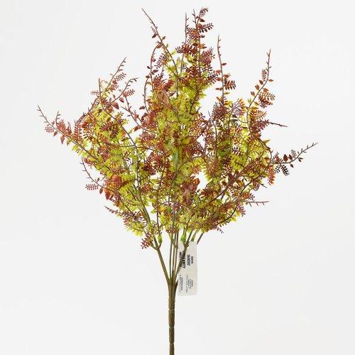 Zeleň papraď hnedá 40cm
