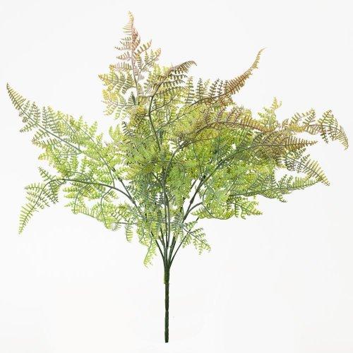 Zeleň papraď ružovkasté konce 40cm