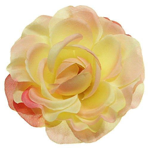 Hlava ruža smotanovo ružová