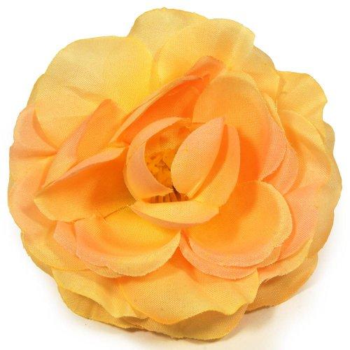 Hlava ruža rozkvitnutá marhuľová