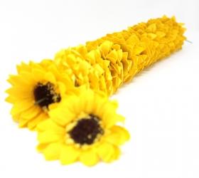 Mydlové kvety, veľká slnečnica - žltá
