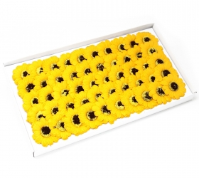 Mydlové kvety, malá slnečnica - žltá