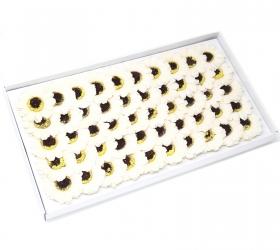 Mydlové Kvety - Malá Slnečnica - Krémová