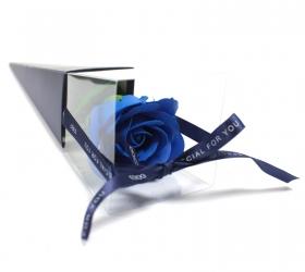 Mydlový kvet - modrá ruža