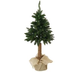 Vian strom gh06 180  smrek na pni