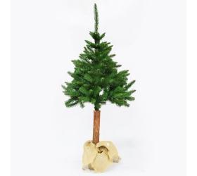 Vianočný strom sosna papa na pni 180 cm