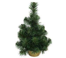 Vianočný strom v kvetináči
