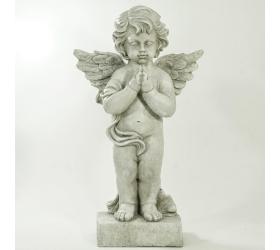 Anjel mgo